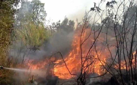 18 richieste per incendi boschivi