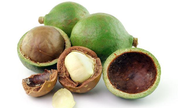 magiche noci di macadamia virtu