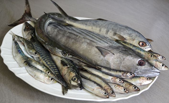 pesce azzurro povero ma ricco