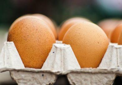Uova di gallina al Fipronil | Eseguite le controanalisi, sono buone, nessuna contaminazione