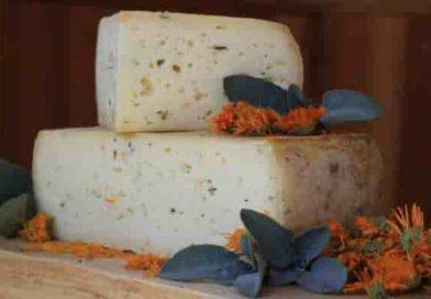 Corpi estranei nel formaggio Dolomiti | Il rischio in un lotto e il Ministero lo ritira dal mercato