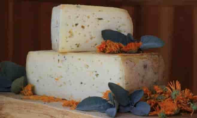 corpi estranei nel formaggio dolomiti