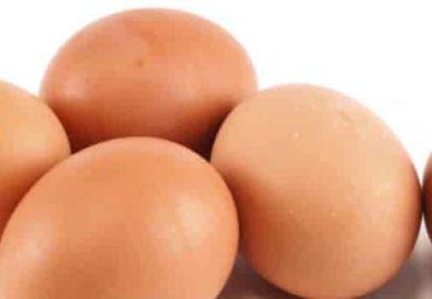 Uova fresche ritirate per salmonella | Il Ministero della salute richiama alcuni lotti dagli scaffali