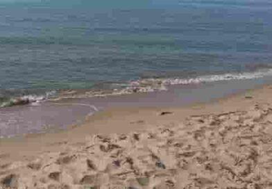 Spiagge Bandiere blu 2020   L'elenco completo suddiviso per regioni